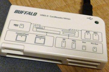Buffalo_crw_03